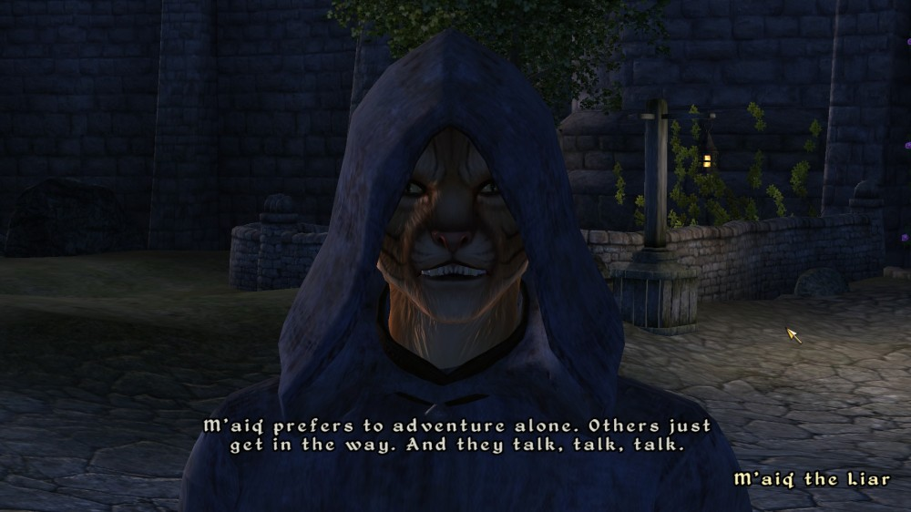 Oblivion: M'aiq the Liar doesn't want co-op play - he may be onto something... ;)