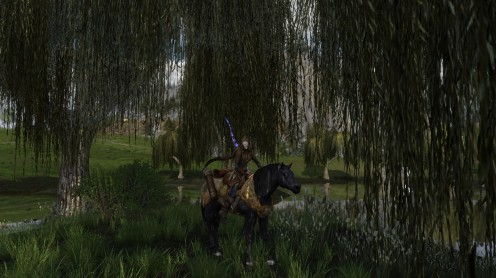 Lord of the Rings Online: it was pretty exciting to be playing an actual Mirkwood elf at last :)