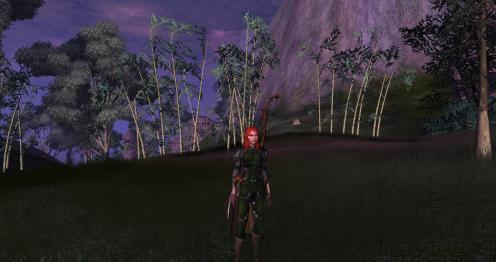 Suzita the Ranger
