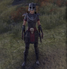 Fort Amol Guard disguise
