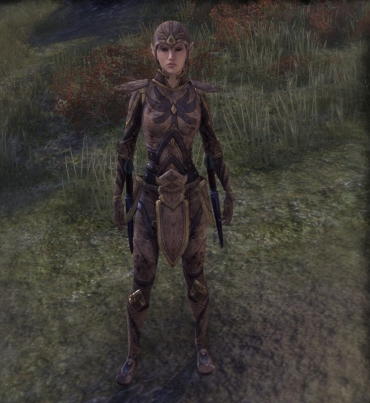 Phaer Mercenary disguise