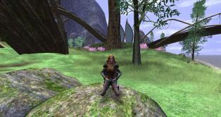 VGD - mallen - shaman