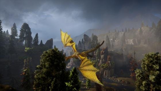 fereldan dragon