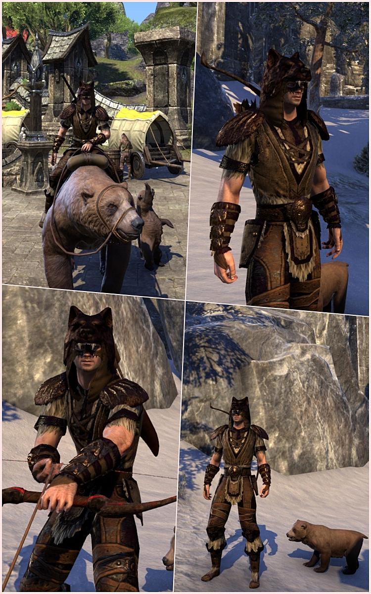 stamina warden outfit elderscrolls online